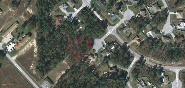 0 Hemlock Loop Pass, Ocala, FL 34472 (MLS #538481) :: Realty Executives Mid Florida
