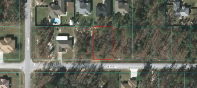 TBA SE 160th Place, Summerfield, FL 34491 (MLS #538853) :: Realty Executives Mid Florida