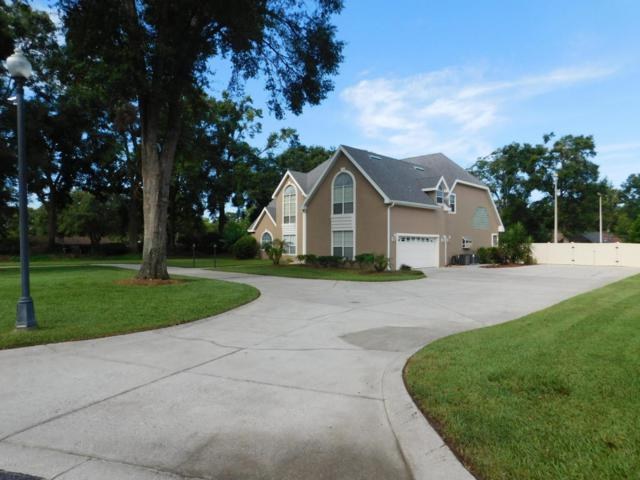 24 NE 56th Terrace, Ocala, FL 34470 (MLS #538867) :: Bosshardt Realty
