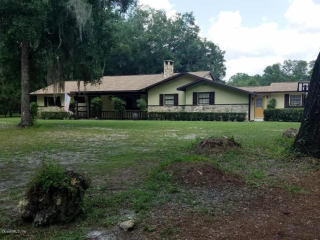 43 W Lake View Drive, Ocala, FL 34482 (MLS #538895) :: Bosshardt Realty
