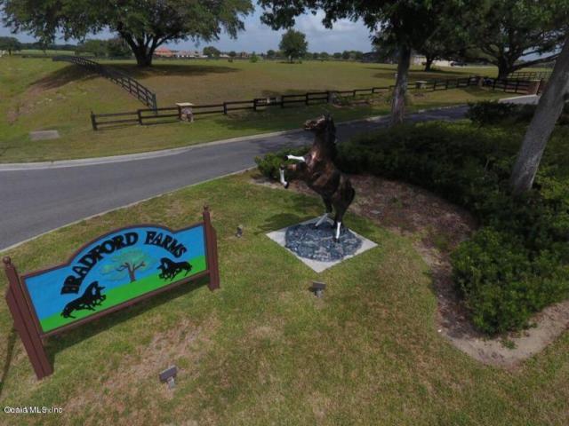 tbd SW 93 Lane Lane, Ocala, FL 34476 (MLS #538963) :: Pepine Realty