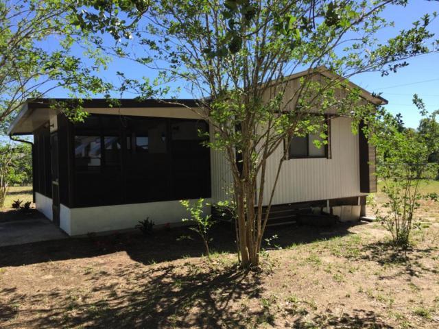 16900 SE 251st Terrace, Umatilla, FL 32784 (MLS #539059) :: Realty Executives Mid Florida