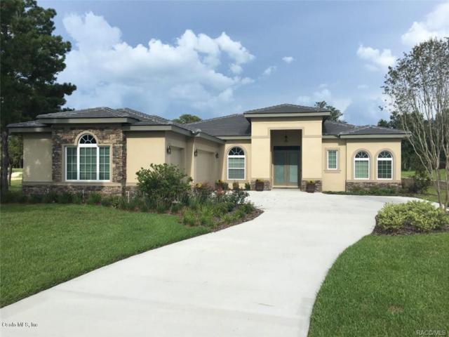3116 W Shadow Creek Loop, Lecanto, FL 34461 (MLS #539107) :: Realty Executives Mid Florida