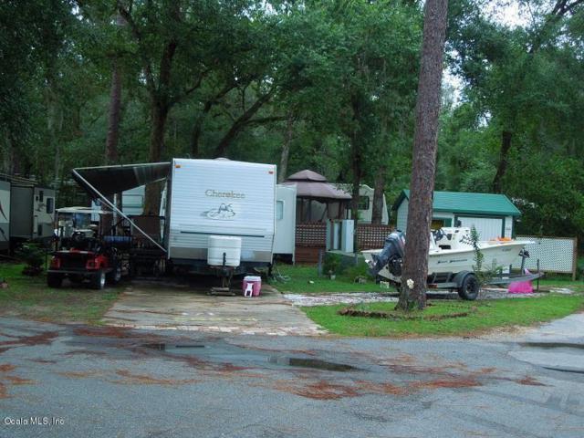 25204 NE 143 Street, Salt Springs, FL 32134 (MLS #539371) :: Bosshardt Realty