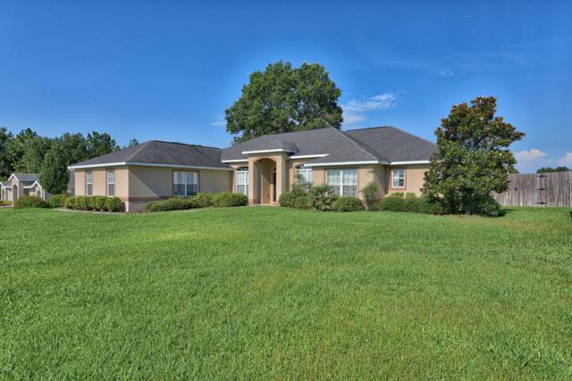 990 SE 67 Th Court, Ocala, FL 34472 (MLS #539430) :: Bosshardt Realty