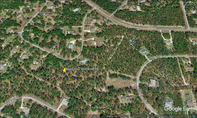 TBD SW 209TH Circle, Dunnellon, FL 34431 (MLS #539463) :: Bosshardt Realty