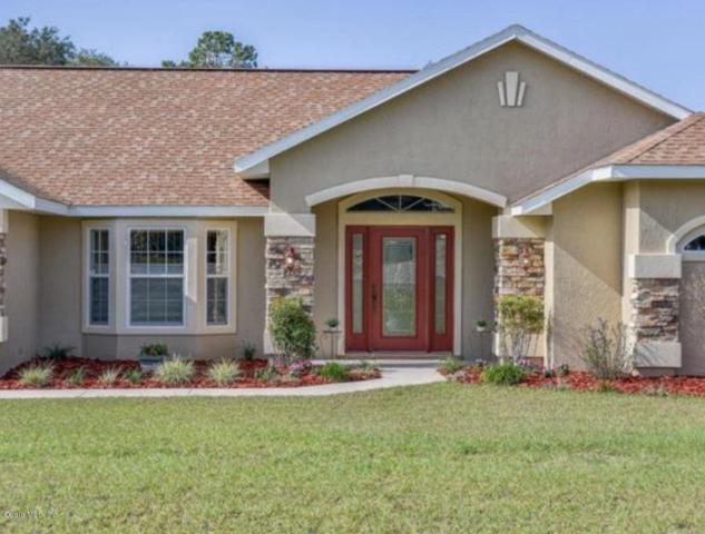 6282 NE 61st Avenue Road, Silver Springs, FL 34488 (MLS #539466) :: Pepine Realty