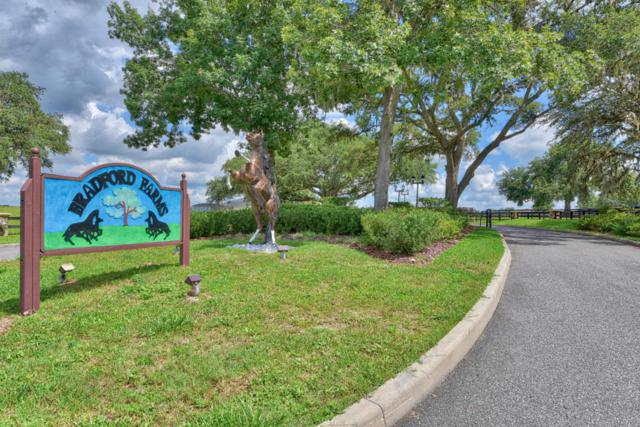 00 SW 90th Lane, Ocala, FL 34476 (MLS #539599) :: Pepine Realty