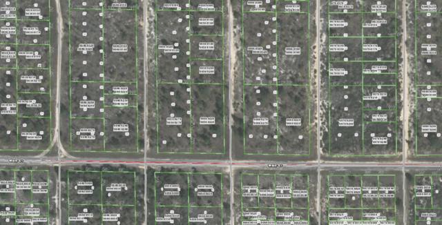 00 Kansas Avenue, Hawthorne, FL 32640 (MLS #539645) :: Bosshardt Realty