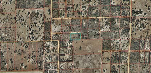 0 NE 50th Place, Williston, FL 32696 (MLS #539690) :: Realty Executives Mid Florida