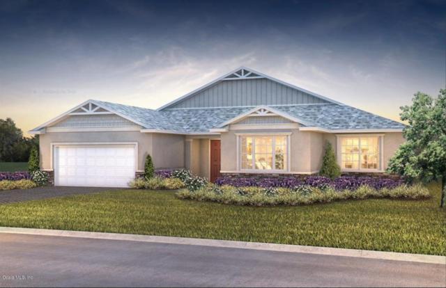 10073 SW 89th Loop, Ocala, FL 34481 (MLS #539788) :: Bosshardt Realty