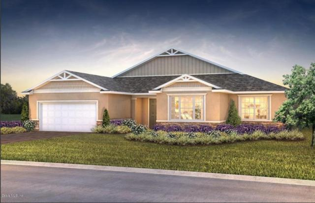 10163 SW 89th Loop, Ocala, FL 34481 (MLS #539790) :: Bosshardt Realty