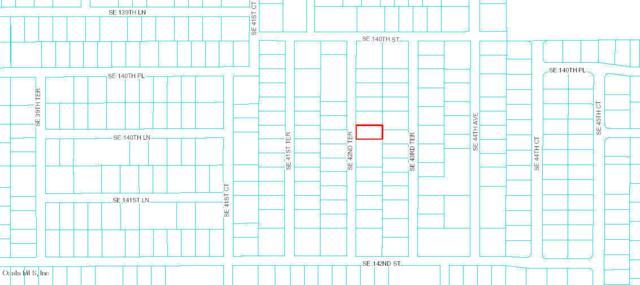 0 SE 42nd Terrace Terrace, Summerfield, FL 34491 (MLS #539859) :: Thomas Group Realty