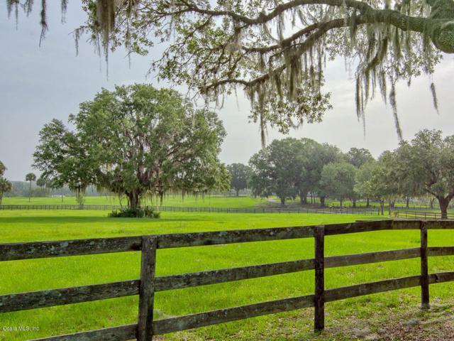 17353 NW Highway 225, Reddick, FL 32686 (MLS #539910) :: Realty Executives Mid Florida