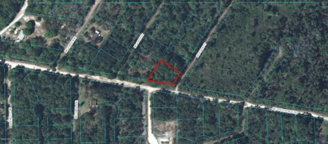 00 NE 234TH PL Road, Fort Mccoy, FL 32134 (MLS #540235) :: Bosshardt Realty