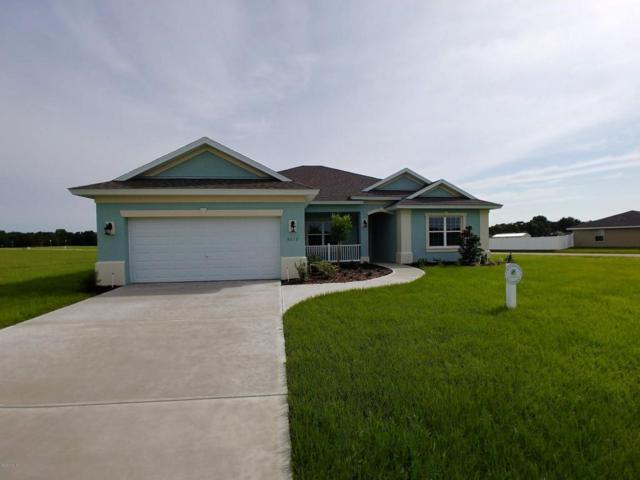 9219 SE 49 Avenue, Ocala, FL 34480 (MLS #540290) :: Bosshardt Realty