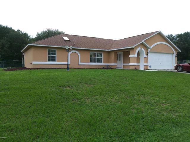 10128 SW 133rd Ave, Dunnellon, FL 34432 (MLS #540432) :: Bosshardt Realty