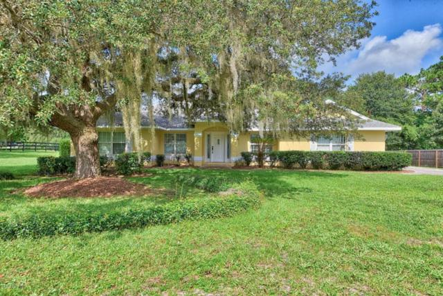 5676 NE 61st Avenue Road, Silver Springs, FL 34488 (MLS #540466) :: Pepine Realty