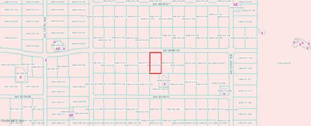 00 SW 89th Street, Dunnellon, FL 34432 (MLS #540532) :: Bosshardt Realty