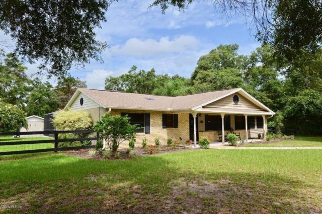 11100 SE 108th Terrace Road, Belleview, FL 34420 (MLS #540636) :: Bosshardt Realty