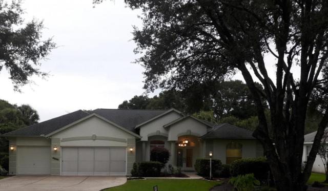 19690 SW 88th Loop, Dunnellon, FL 34432 (MLS #540822) :: Realty Executives Mid Florida