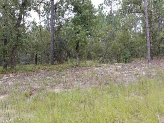 0 SW 69 Th Place, Ocala, FL 34481 (MLS #540874) :: Thomas Group Realty