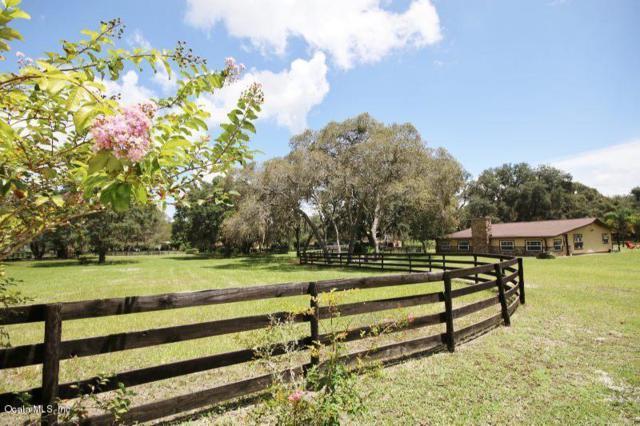 40706 5th Street, Lady Lake, FL 32159 (MLS #540884) :: Realty Executives Mid Florida