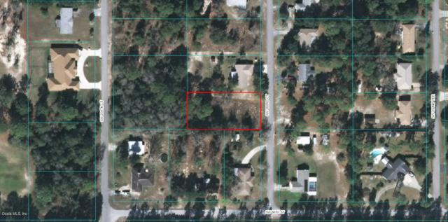 0 SW 203rd Court, Dunnellon, FL 34431 (MLS #541067) :: Thomas Group Realty