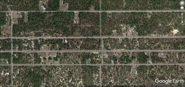 TBD SW Marine Boulevard, Dunnellon, FL 34431 (MLS #541149) :: Bosshardt Realty