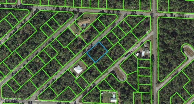 1057 Cellini Street, Lake Placid, FL 33852 (MLS #541277) :: Pepine Realty