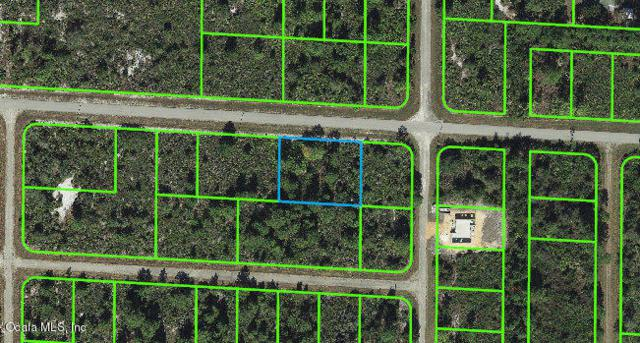 3524 Prospect Drive, Lake Placid, FL 33852 (MLS #541278) :: Pepine Realty
