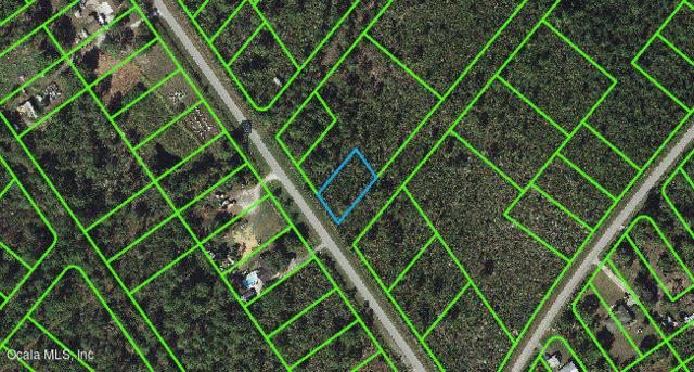 651 Washington Boulevard, Lake Placid, FL 33852 (MLS #541286) :: Realty Executives Mid Florida