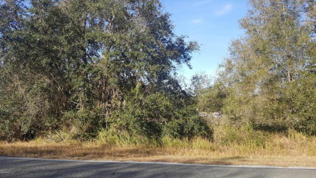 tbd SE 183 Ave Road, Ocklawaha, FL 32179 (MLS #541360) :: Bosshardt Realty