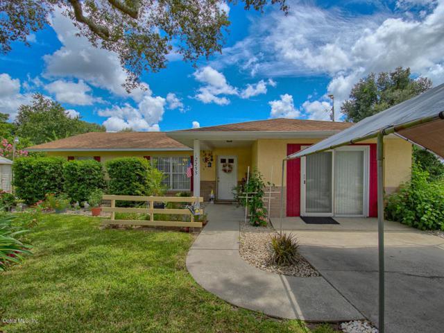 12255 SE 99th Terrace, Belleview, FL 34420 (MLS #541387) :: Bosshardt Realty