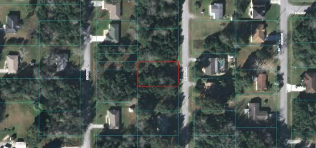 0 SE 40th Terrace, Belleview, FL 34420 (MLS #541445) :: Realty Executives Mid Florida