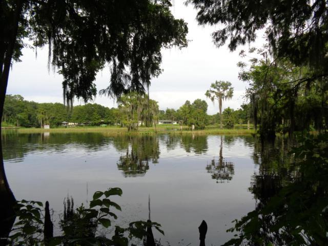 12459 N Osborne Avenue, Dunnellon, FL 34434 (MLS #541464) :: Realty Executives Mid Florida