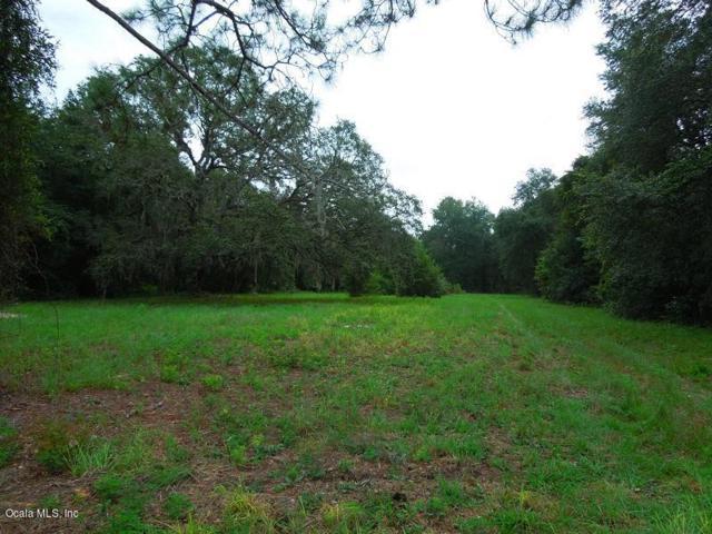 0 NE 148 Road, Fort Mccoy, FL 32134 (MLS #541484) :: Bosshardt Realty