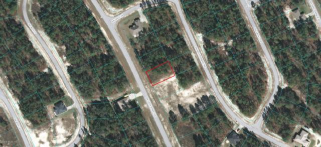 0 SW 135th Street Road, Ocala, FL 34473 (MLS #541486) :: Realty Executives Mid Florida