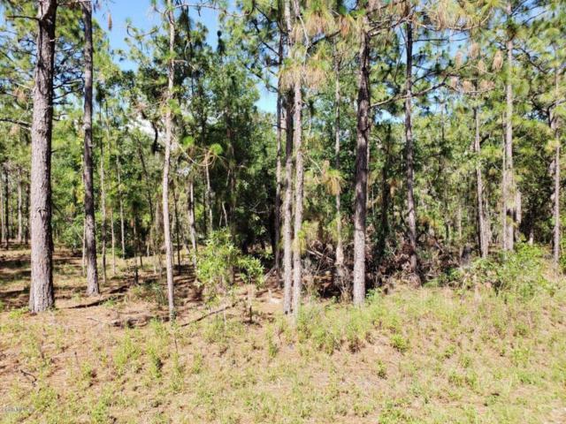 TBD Locust Lane Drive, Ocala, FL 34472 (MLS #541556) :: Realty Executives Mid Florida