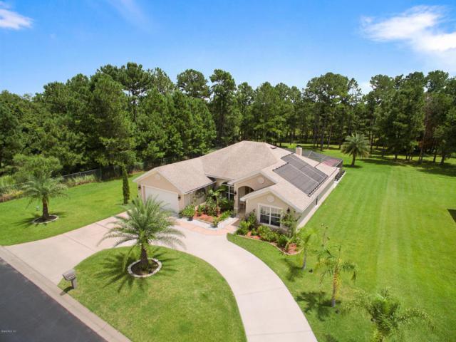 19 Sunrise Court, Ocala, FL 34472 (MLS #541686) :: Bosshardt Realty