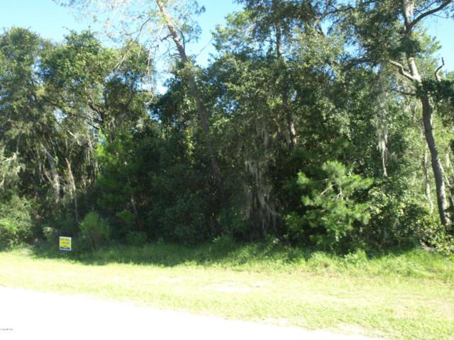 4027 SW 100th Street, Ocala, FL 34476 (MLS #541697) :: Bosshardt Realty