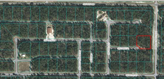 TBD SW 136th Place, Ocala, FL 34473 (MLS #541757) :: Bosshardt Realty