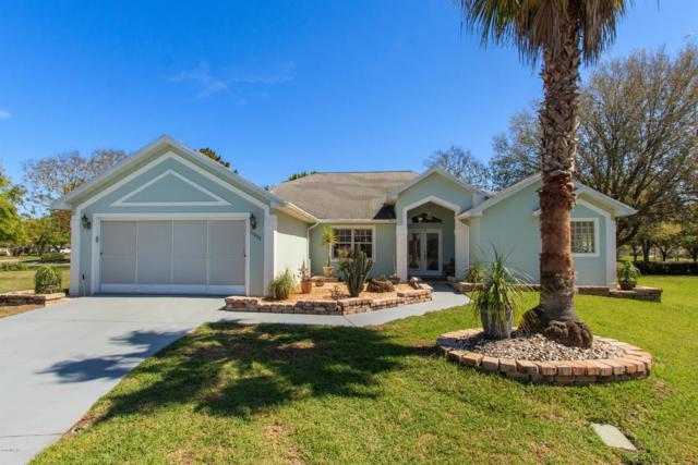 11002 SE 174th Loop, Summerfield, FL 34491 (MLS #541990) :: Pepine Realty