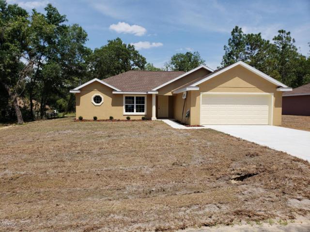 12624 SE 53rd Terrace Road, Belleview, FL 34420 (MLS #542372) :: Bosshardt Realty