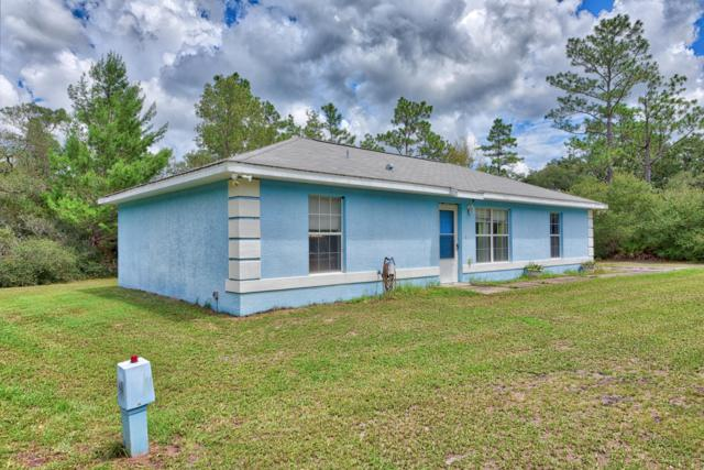 8365 SW 152nd Place, Dunnellon, FL 34432 (MLS #542378) :: Pepine Realty