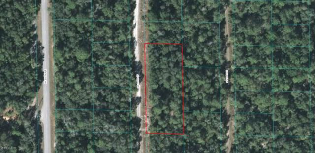0 NE 110 Court, Fort Mccoy, FL 32134 (MLS #542408) :: Bosshardt Realty