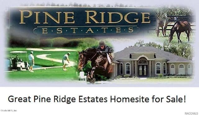 6172 W Pine Ridge Boulevard, Beverly Hills, FL 34465 (MLS #542409) :: Realty Executives Mid Florida