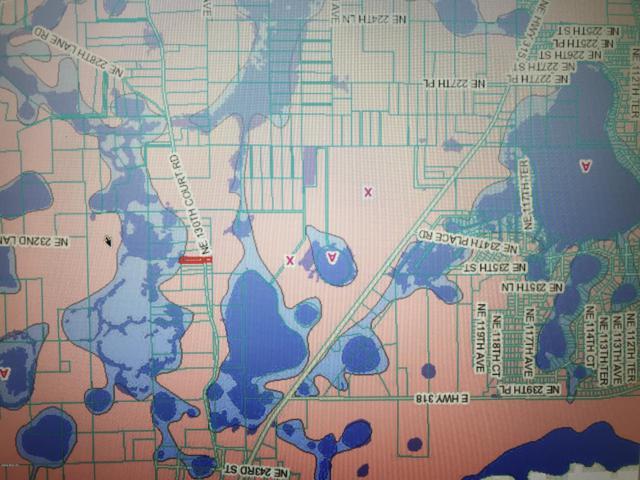 0 NE 130 CT NULL RD, Fort Mccoy, FL 32132 (MLS #542428) :: Pepine Realty