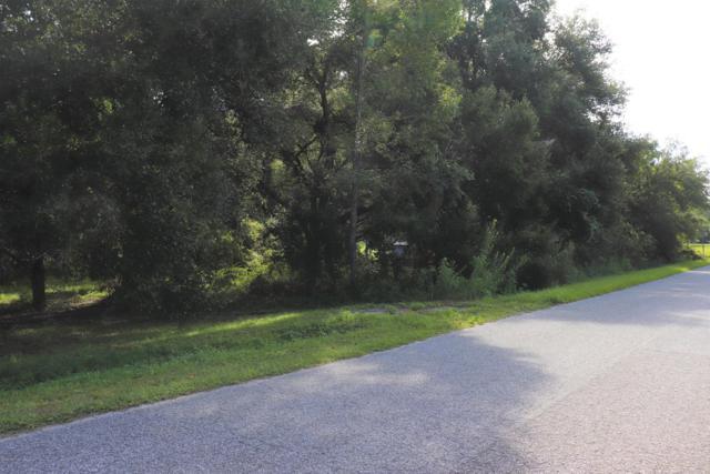 00 SE 17th Street, Ocklawaha, FL 32179 (MLS #542533) :: Bosshardt Realty