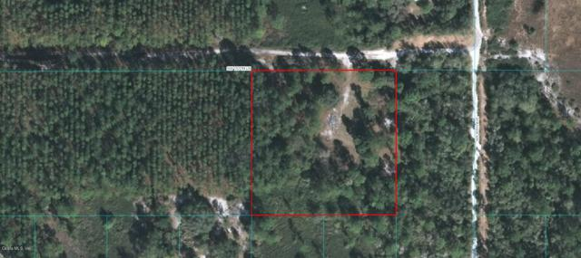 0 SW 157 Lane, Dunnellon, FL 34432 (MLS #542547) :: Realty Executives Mid Florida